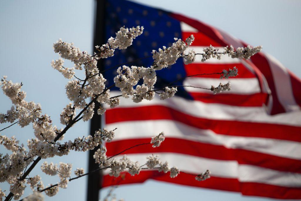 awarded psychiatric disability flag representing veterans